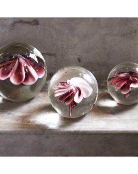 hkliving-sfeerfoto-glazen-bal-roze-bloem-small-medium-large